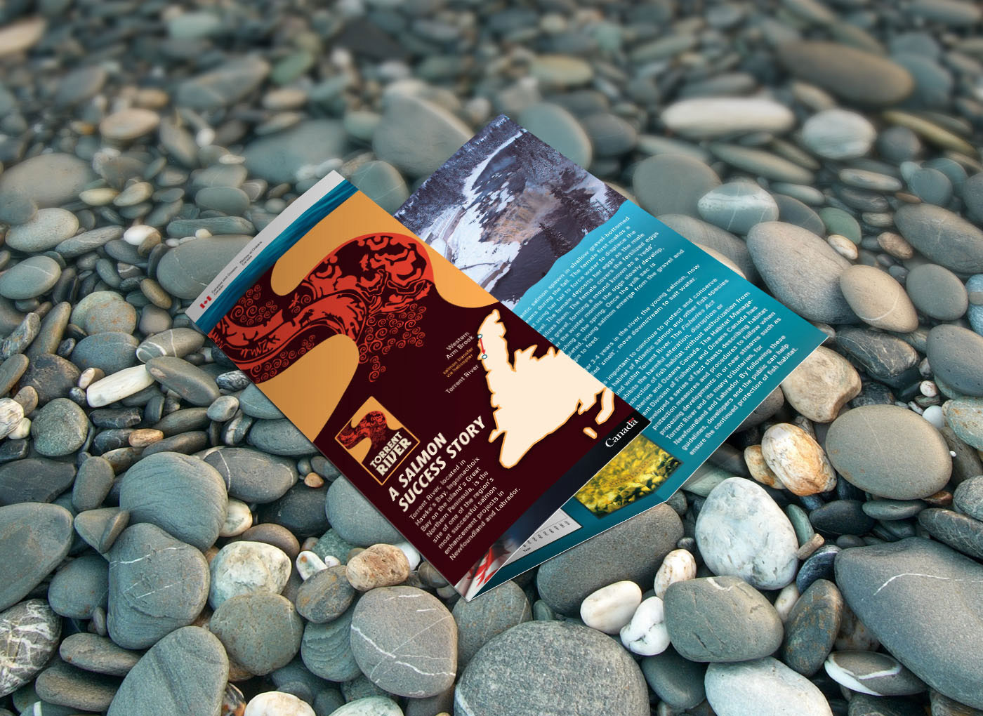 Torrent_River_Brochure_7