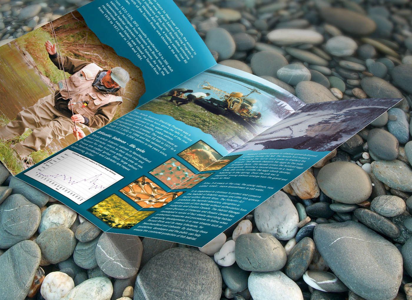 Torrent_River_Brochure_9